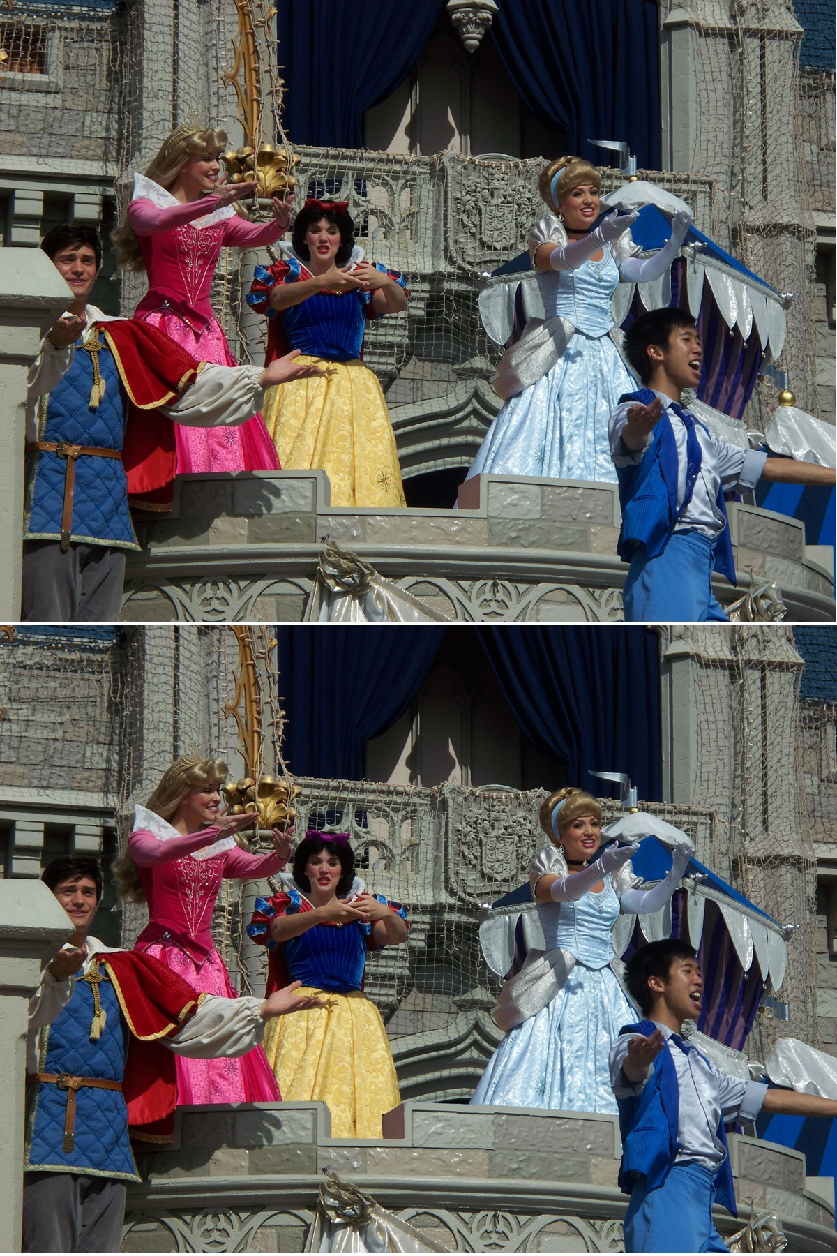 Disney Princesses: Find the differences
