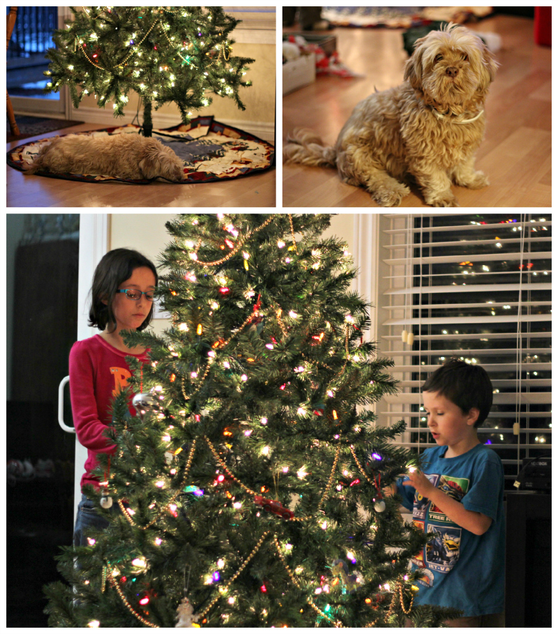 Wordless Wednesday: The Christmas Tree