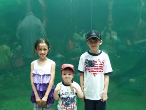 kids in front of the polar bear tank
