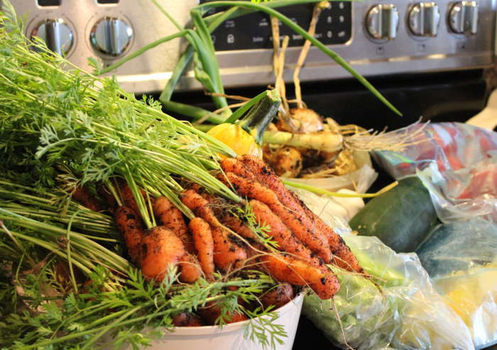 Garden vegetables, some previously blanched and now defrosting
