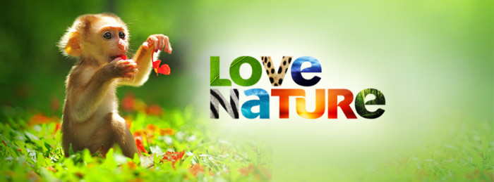 Love-Nature-Monkey-Banner